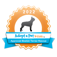 Boston Terrier 2014 Badge