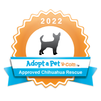 Chihuahua 2014 Badge