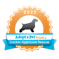 Cocker Spaniel 2014 Badge