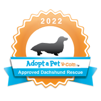 Dachshund 2014 Badge